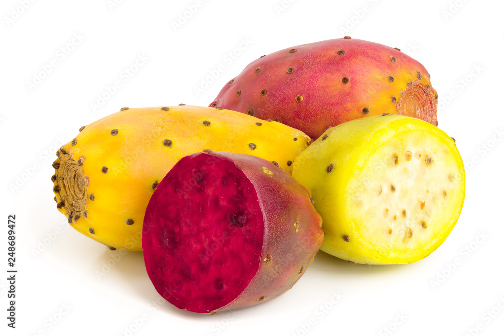 Fototapeta yellow and red prickly pear or opuntia isolated on a white background