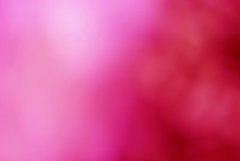 Abstract Blurred Pink And Red Color Background.