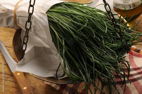 Photo Salsola soda Barba di frate Agretti 7103_6808  barilla plant