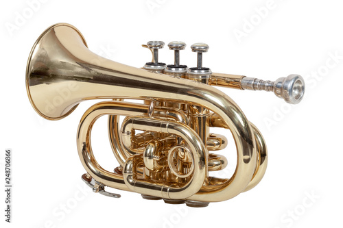 Fotografie, Obraz  classical wind musical instrument cornet isolated on white background