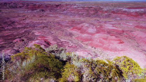In de dag Candy roze Dawn at Petrified Forest National Park