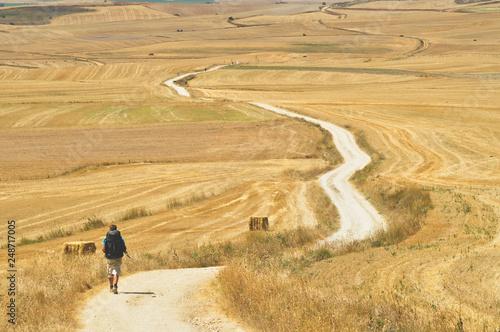 Leinwand Poster Young man is walking on the Cammino de Santiago de Compostela.