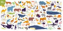 Big Vector Set Of Different Wo...