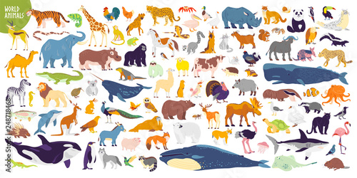 Big vector set of different world wild animals, mammals, fish, reptiles and birds Wallpaper Mural