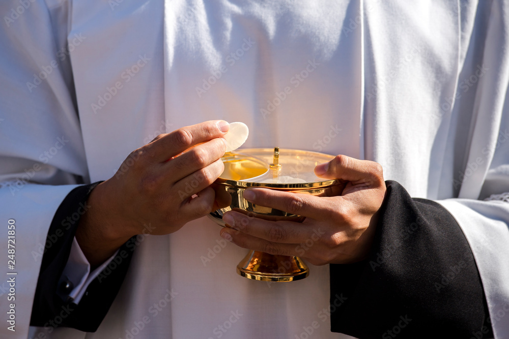 Fototapety, obrazy: VATICAN CITY, October 16: Catholic priest giving beliver a Holy Communion