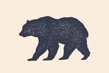 Bear, Silhouette. Vintage Logo...
