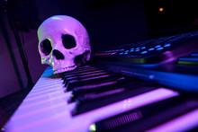Performance Skull Piano Keyboard