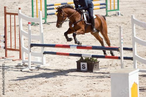 Fotografía  horse jumping the hurdles, equestrian contest