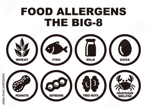 Photo 食物アレルギー誘発物質 8品目 アイコンイラスト