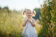 Beautiful Baby Girl  In White Dress Walking In A Sunny Field. Cute Baby Girl 2-3 Year Old  Playing  In A Meadow.