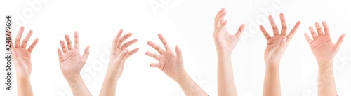 Set of man hands isolated on white background Canvas Print