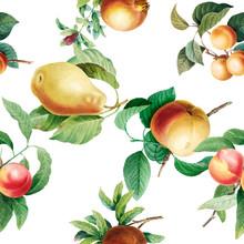 Fruit Patterned Background