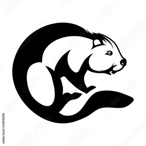 Photo beaver logo design in circle