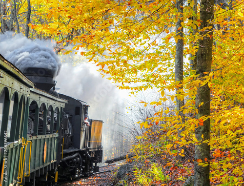 Cuadros en Lienzo An old vintage train with thick smoke making its way through the woods in WV, with beautiful autumn colors and foliage