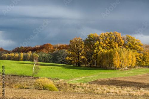 Foto  burzowe chmury nad polem, piękna jesień