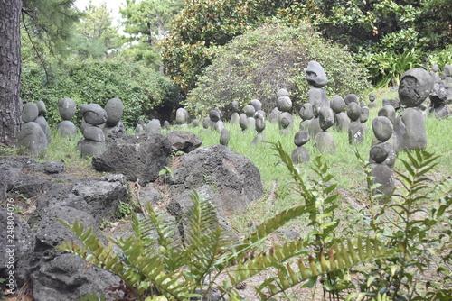 Fotobehang Olijf Rocks in the garden