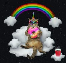 The Cat Unicorn In Sunglasses ...