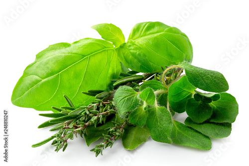 Fototapeta Bundle of freshly picked provence herbs isolated on white. obraz