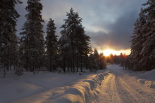 Snowmobile Trail At Sunset, Lapland In Finland