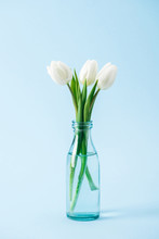 Bouquet Of White Tulips In Transparent Glass Vase On Blue Background
