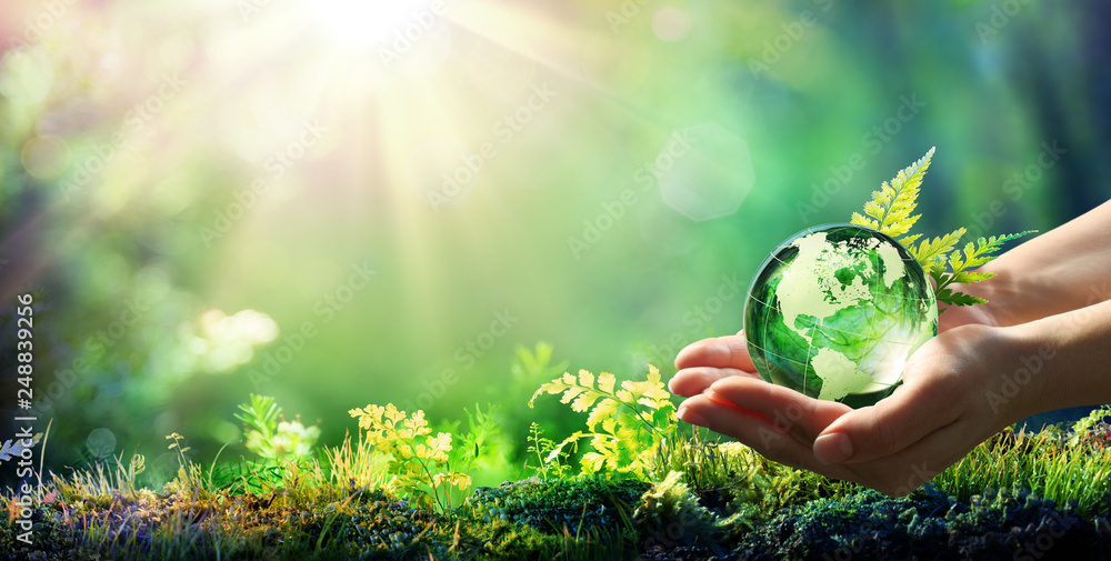 Fototapety, obrazy: Hands Holding Globe Glass In Green Forest - Environment Concept