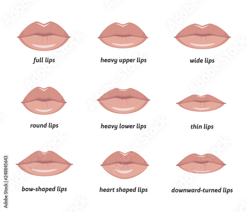 Various types of woman lips Wallpaper Mural