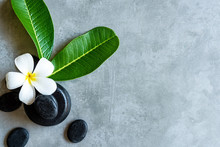 Thai Spa.  Top View Of White Plumeria Flower Setting For Massage Treatment And Relax On Concrete Blackboard With Copy Space.  Green Leaf With Black Stones Pile For Spa Therapy.  Lifestyle Healthy