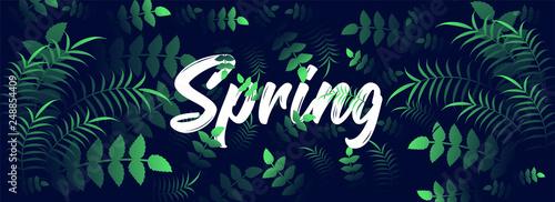 Fototapeta Spring header or banner design decorated with tropical leaves. obraz