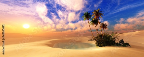 Panorama of the desert. Oasis and palm trees. banner. Canvas Print