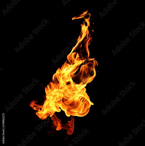 Photo sur Toile Feu, Flamme Fire flames on black background.