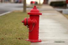 Fire Hydrant Still Life