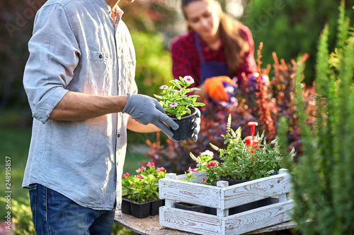 Guy gardener in garden gloves puts the pots with seedlings in the white wooden box on the table and a girl prunes plants in the wonderful nursery-garden on a sunny day Fototapet