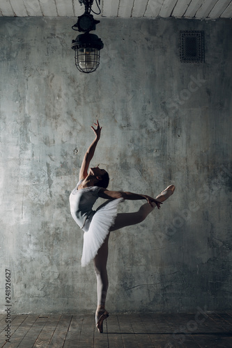 Canvastavla Ballerina female