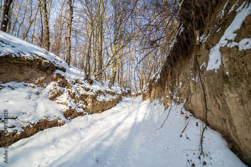 Foto auf Gartenposter Fluss A winter road through a gorge surrounded by trees