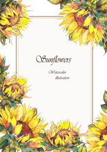 Greeting Card With Sunflowers....