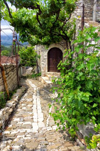 Street with grape vine in Berat, Albania. Wallpaper Mural
