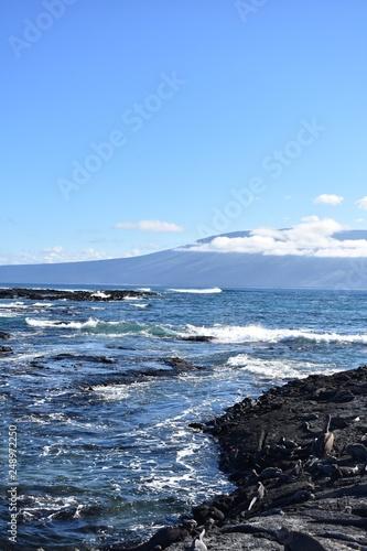Foto op Aluminium Arctica Ocean waves on the rocks
