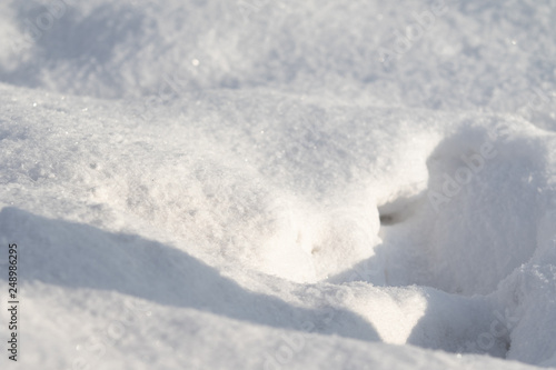 Fotografía  snowy uneven winter nature, cold background