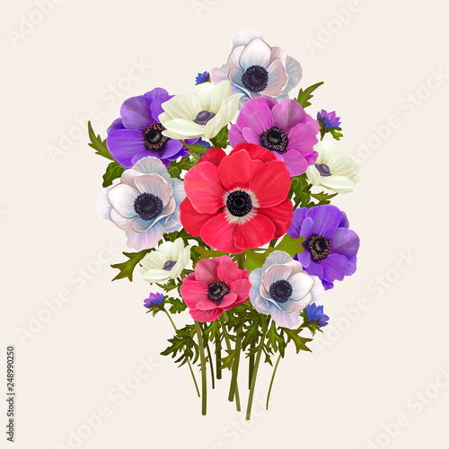 Photo Mixed Anemone flowers