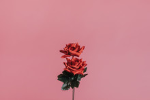 Red Artificial Roses