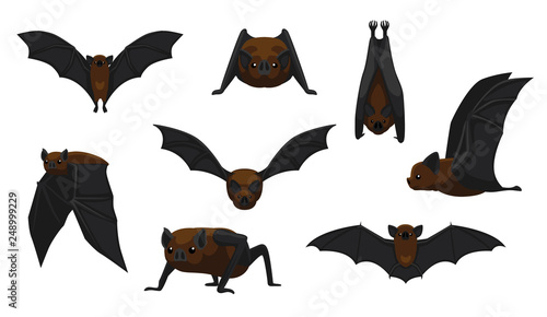 Billede på lærred Vampire Bat Flying Cartoon Vector Illustration