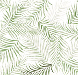 liść palmy w tle - 249036058
