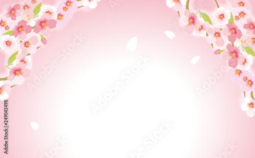 Poster Blanc 優しい桜
