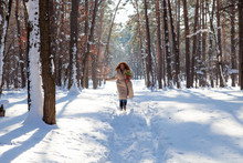 Upbeat Charming Woman In Warm Coat Walking Through Snowy Forest