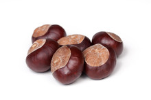 A Small Pile Of Chestnuts, Group Of Conkers Isolated On White Background, Closeup