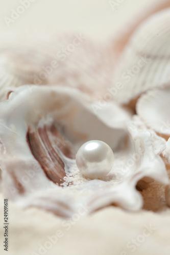 Fotografia Organic pearl in a shell
