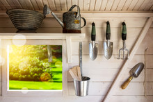 Garden Tools In A Small Storage Shed. Shovels, Rake, Water Pitcher And Gardening Equipment.