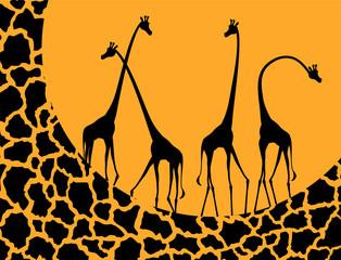 Panel Szklany Podświetlane Żyrafa giraffe illustration design