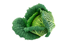 Isolated Fresh Savoy Cabbage H...
