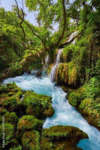 beautiful limestone waterfall forest - 249170645